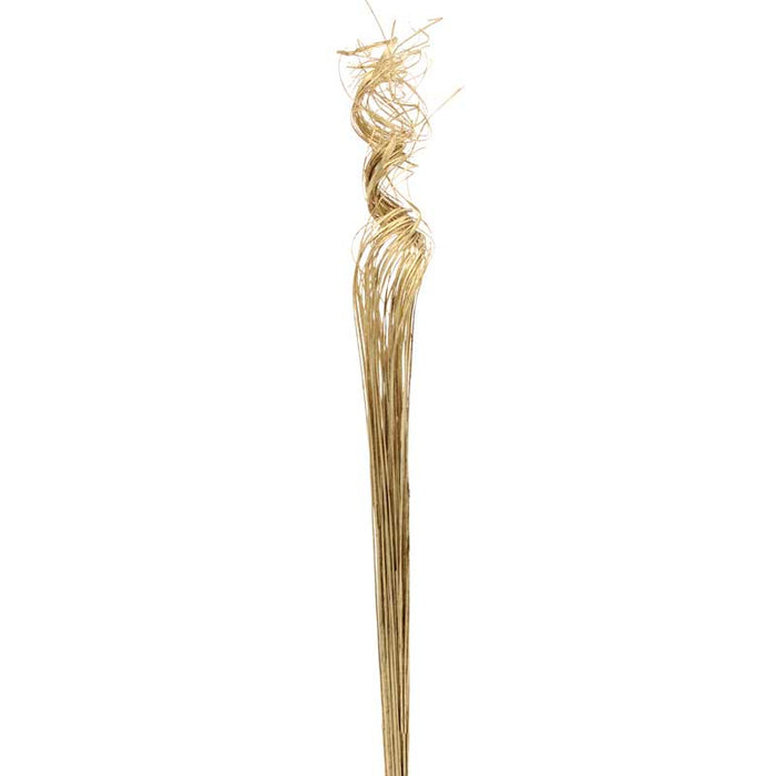 Ting Ting Curly Stems x 76cm - Gold Glitter
