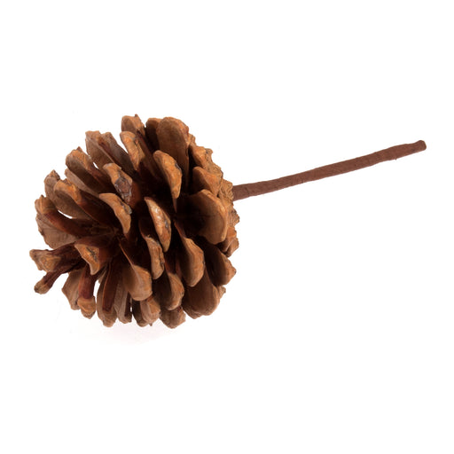 Pine Cone on Wired Stem
