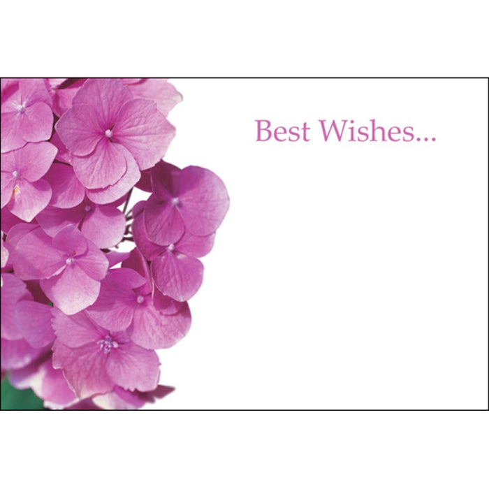 Pack of 50 Florist Cards - Best Wishes Pink Hydrangeas