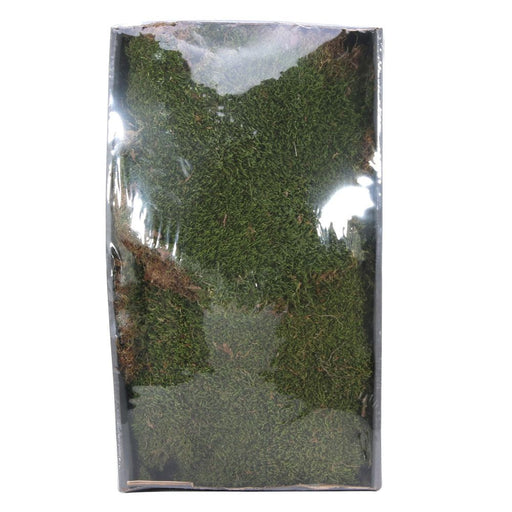 Green Moss w/Tray (Natural) (500gr)