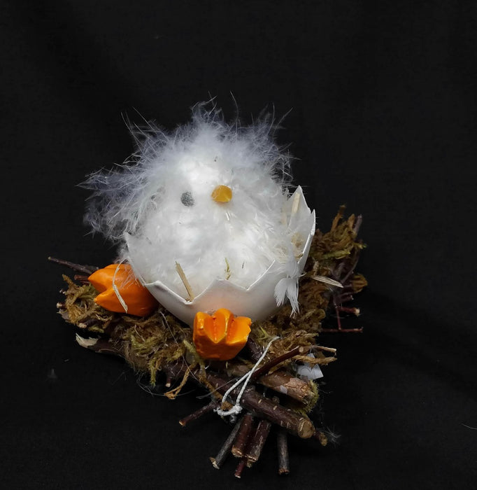 Fluffy Easter Chick on Egg Shell