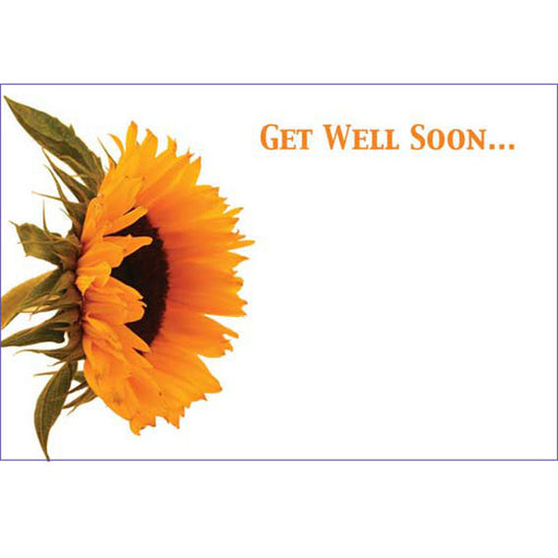 50 Cards Get Well Soon - Sunflower