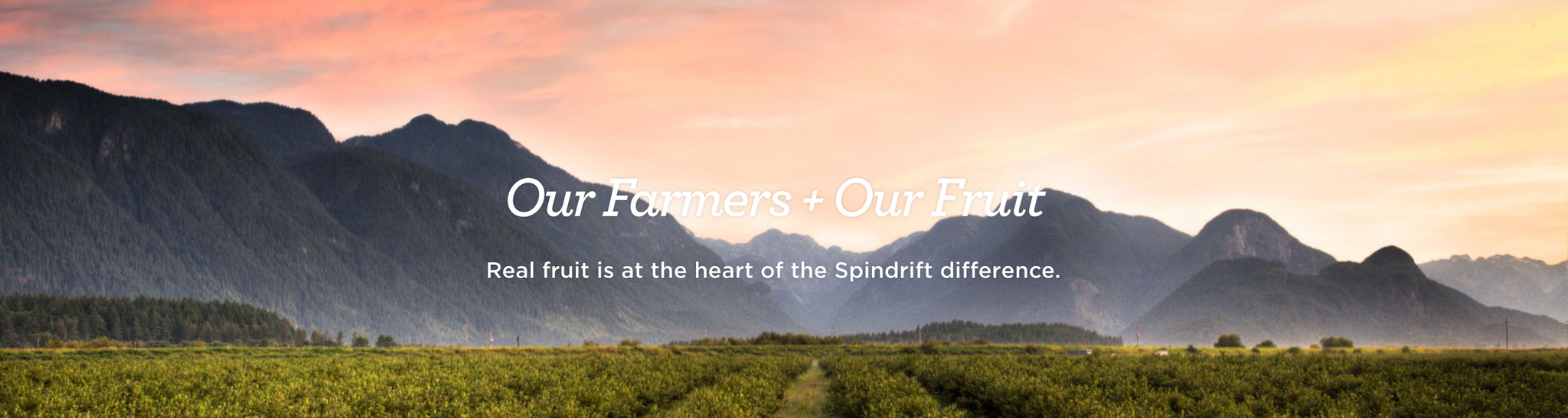 Boston Brands - Spindrift - made with real squeezed fruit