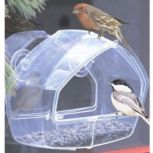 Wild Bird Window Feeder