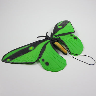 Rubber Butterfly - Green