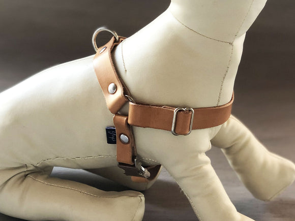 Leather Slip On Dog Harness Ideal for All Sizes and Breeds in 5 Colors