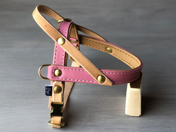 Padded Leather Dog Harness in 5 Colors Ideal for All Sizes