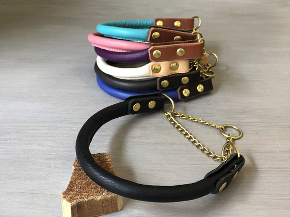 Bicolored Rolled Leather Martingale Dog Collar with Solid Brass Hardware