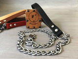 Chain Dog Leash with Leather Handle for Medium and Large Dogs