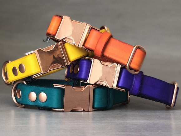 Colorful Leather Quick Release Dog Collars with Rose Gold Hardware
