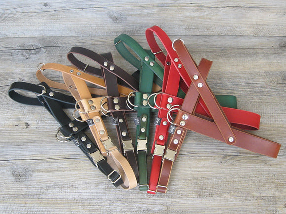 Leather Dog Harness in 6 Colors Ideal for All Sizes