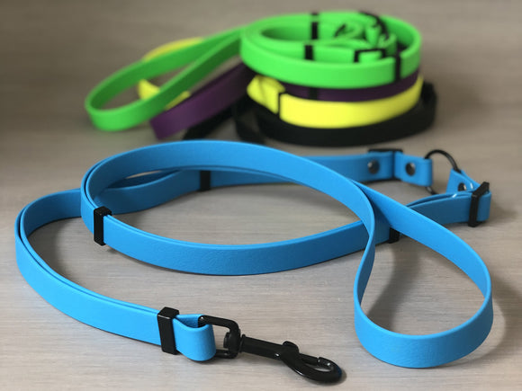 Multifunctional Dog Leash in Colorful Waterproof Coated Webbing