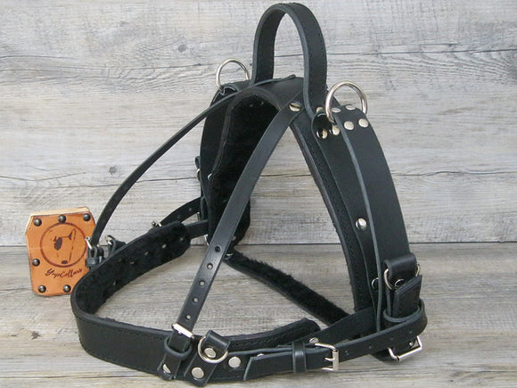Leather Guide Dog Harness with Fixed Semi Rigid Handle