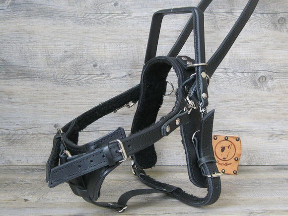 Y Front Leather Guide Dog Harness