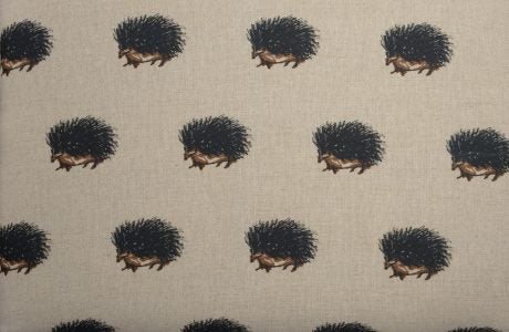 Hedgehogs shelves and coat hooks