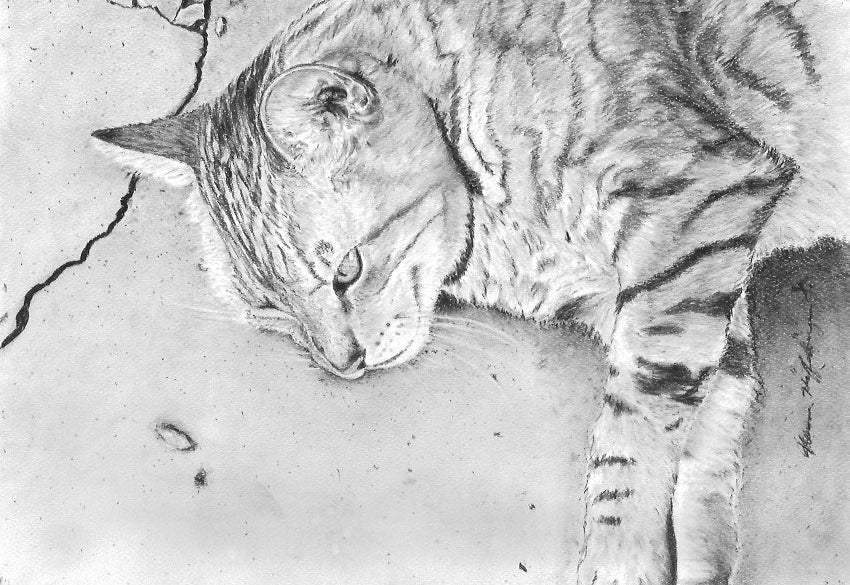 Just Chillin' print of the original charcoal drawing, 11Wx8H inches