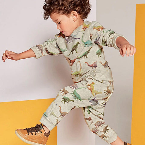 Little Dinosaur Tracksuit Set