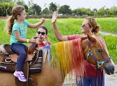 pony ride rental dubai
