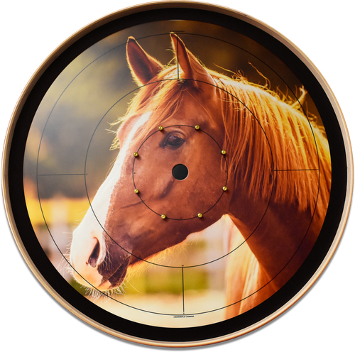 The Golden Horse - Tournament Crokinole Board Game Set - Meets NCA Standards