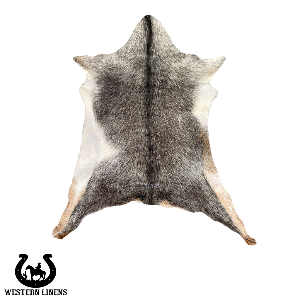 Gray Goat Hide with black Belly- Approx 2-4 feet big #00G10
