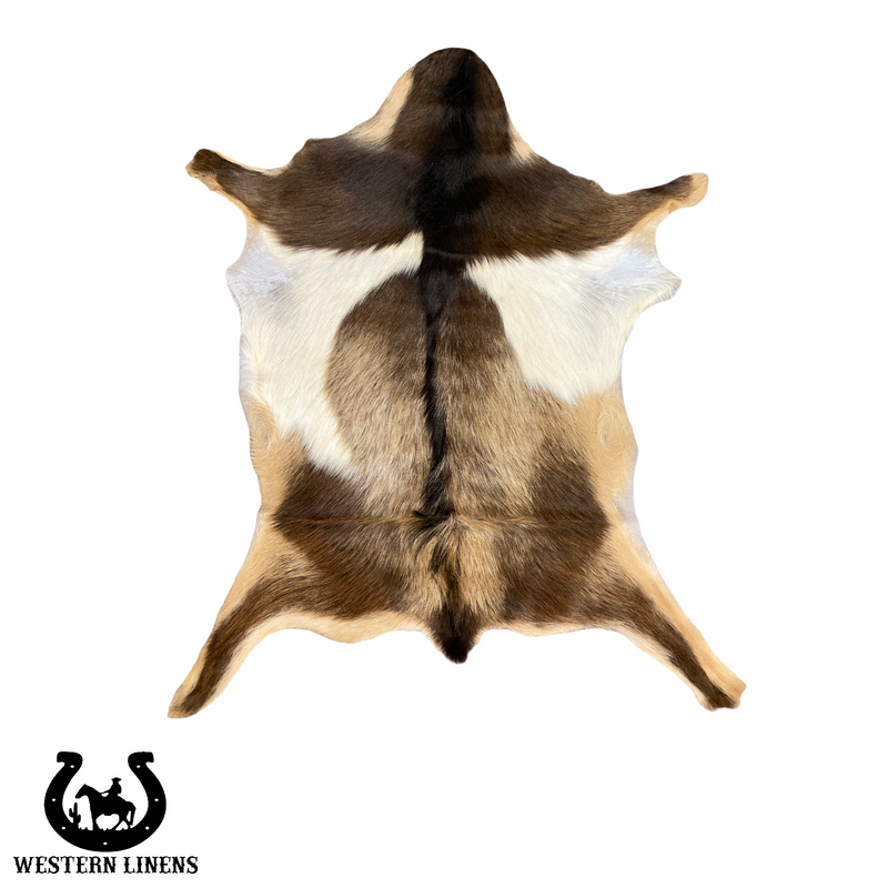Brown & White Goat Hide - Approx 2-4 feet big #00G16