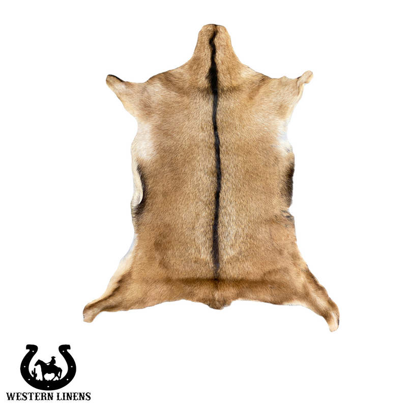 Beige and white goat hide with black belly- Approx 2-4 feet big #00G11