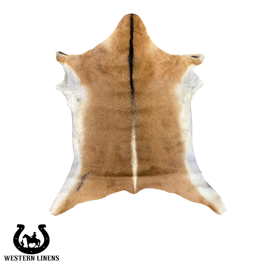 Beige & white goat hide with Black Belly - Approx 2-4 feet big #00G7