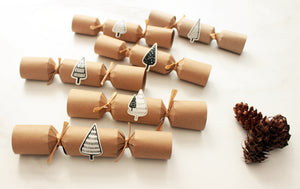 Make your own 6 Plastic-Free Christmas Crackers - Alpine