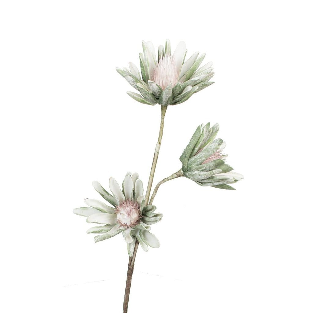 Gwyneth Flower botanical accessories decor