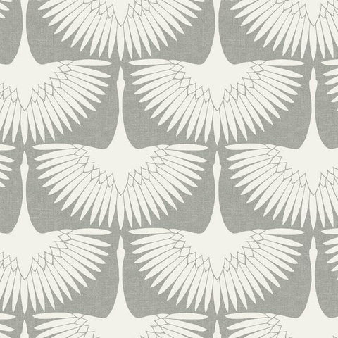 White Feather Wallpaper