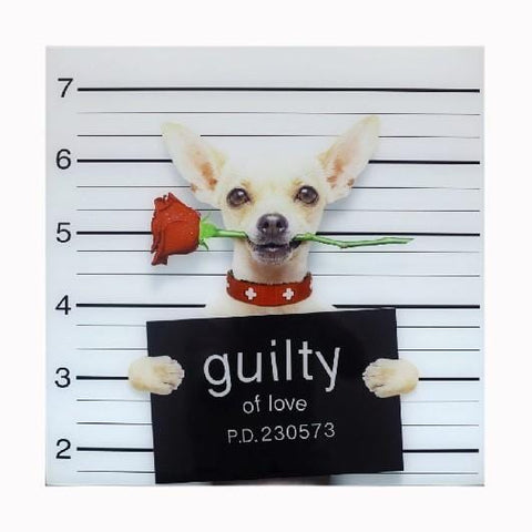 Chihuahua Guilty of Love Wall Art