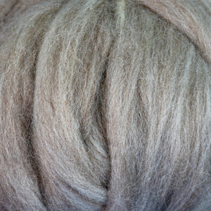 Mixed BFL/Rambouillet closeup