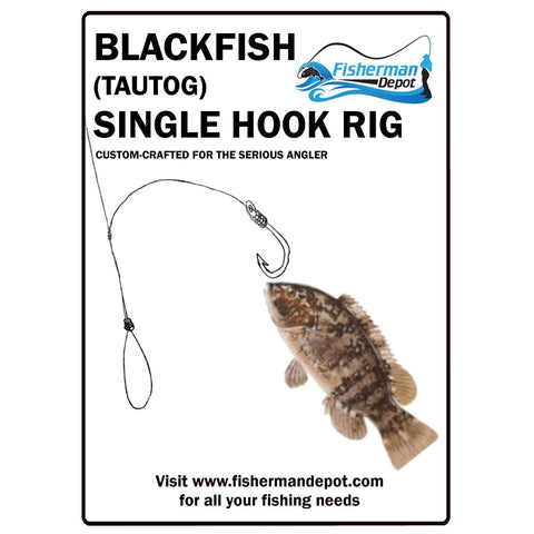 Blackfish Single Hook Rig