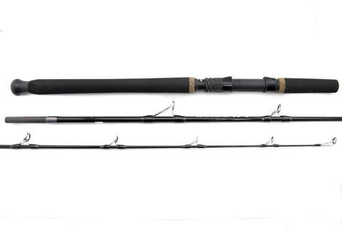 Centaur Constellation Bottom Fish Rod