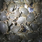 White Crab Half Bushel - STORE PICKUP ONLY