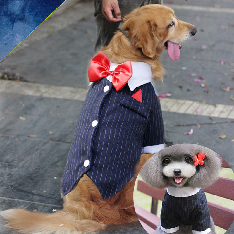 Tuxedo Bow Tie Wedding Suit – Pet Fancy Couture