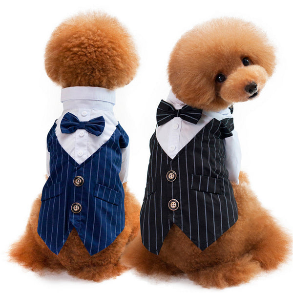 Western Style Wedding Dog Suit & Bow Tie
