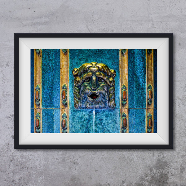 Leon gargoyle from Gellert SPA, photo art print