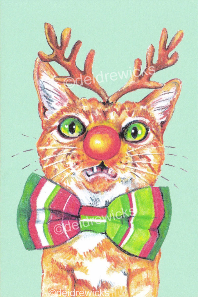 A somewhat festive Christmas orange tabby cat, send a post card instead of a Christmas cardcat