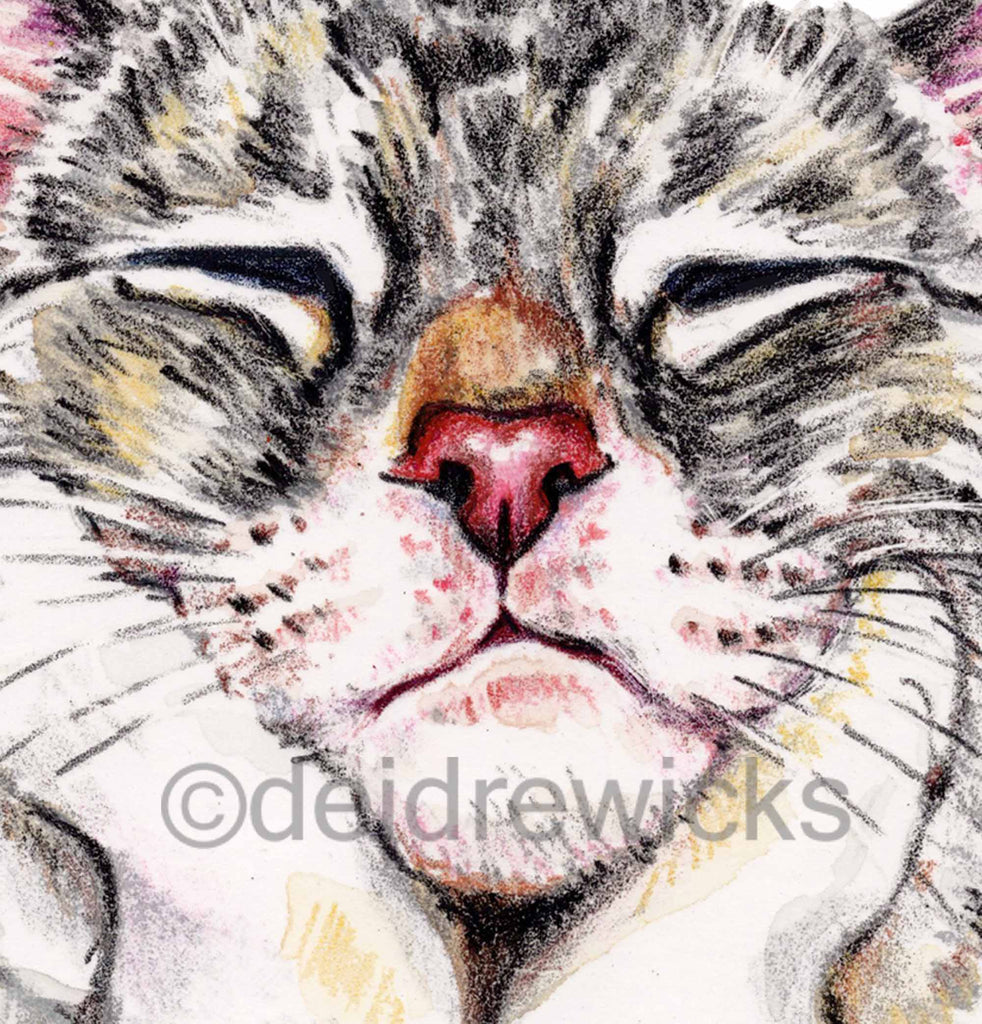 Close up of a crayon painting of a sleeping cat by Deidre Wicks