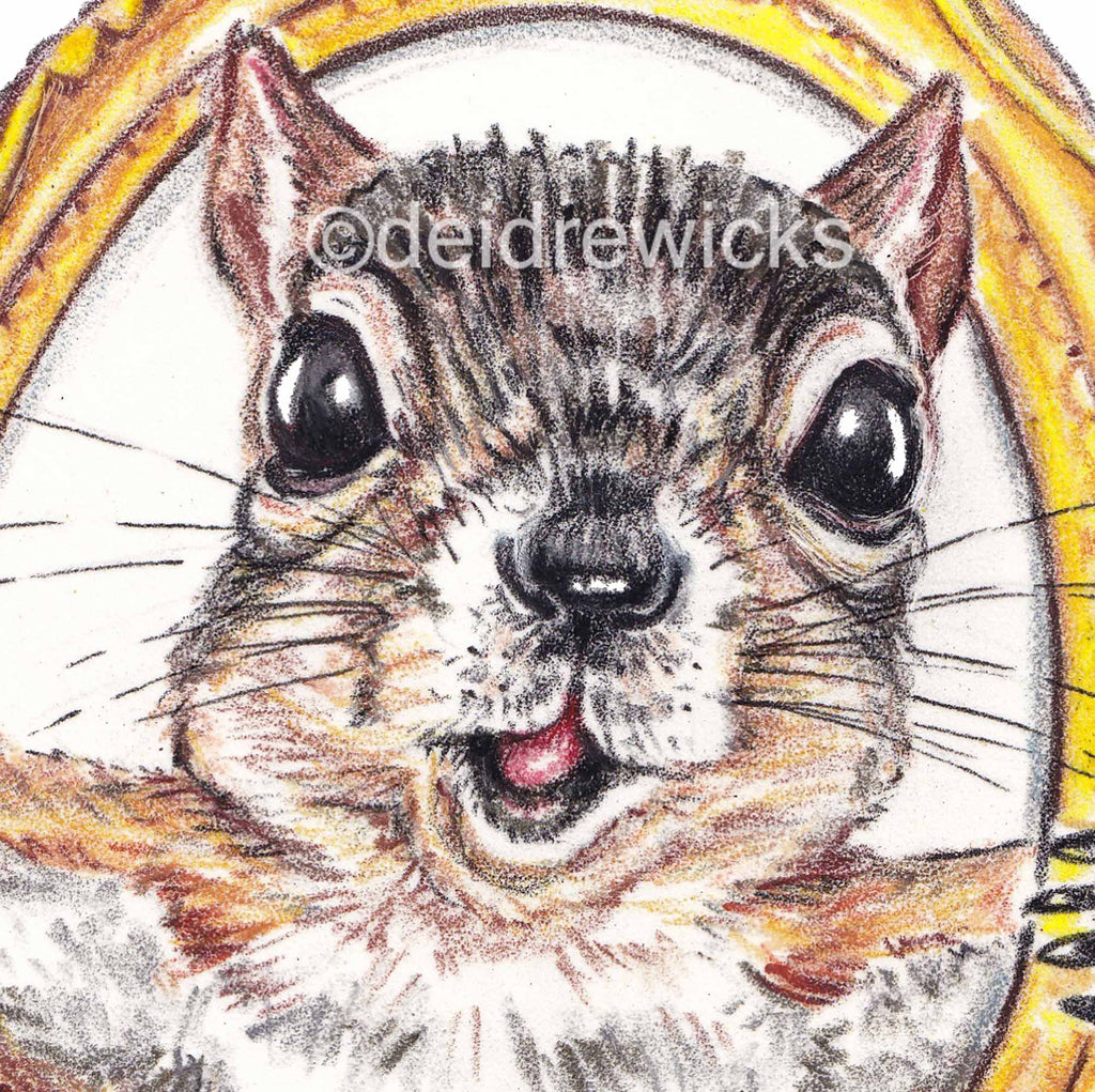 Close up of a crayon illustration of a big eyed fox squirrel