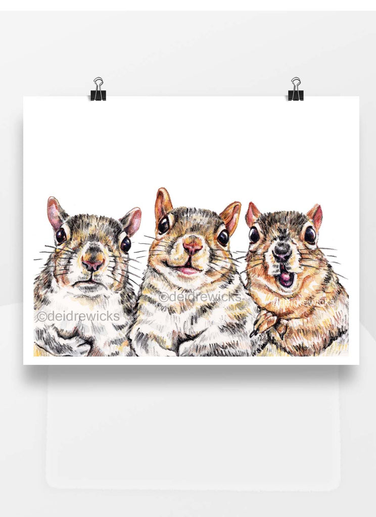 Crayon drawing of 3 squirrels with different facial expressions