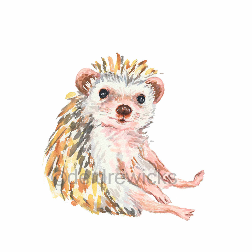 Watercolour painting of a sitting Hedgehog by Deidre Wicks