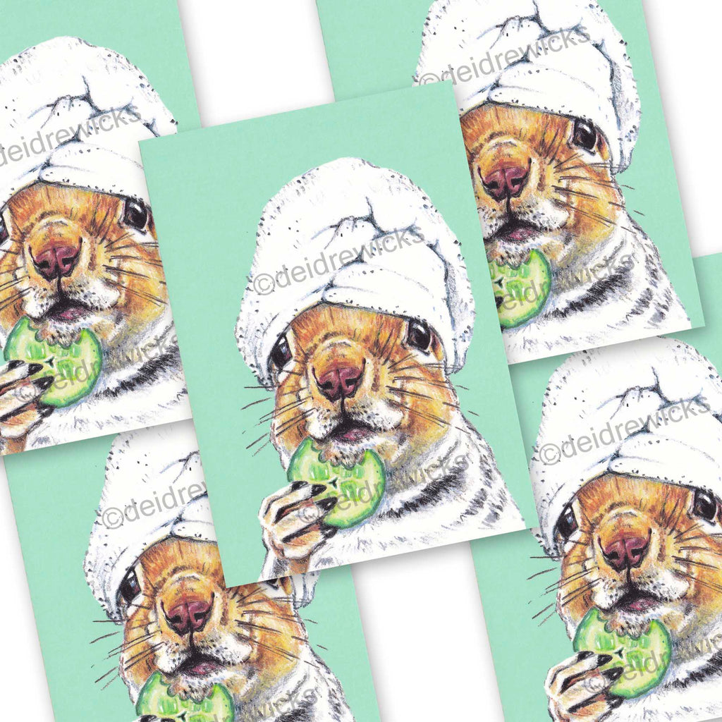 Set of postcards featuring crayon art of a squirrel at the spa by Deidre Wicks