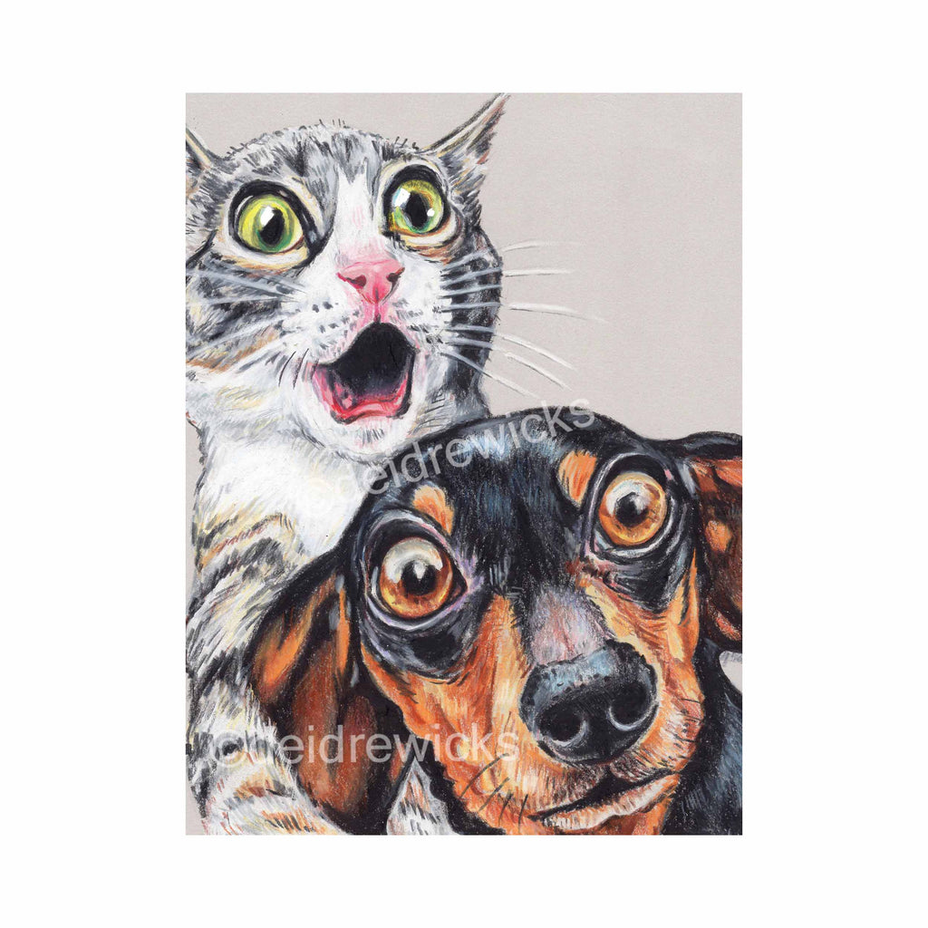 Crayon drawing of a shocked grey tabby kitten and her dachshund buddy