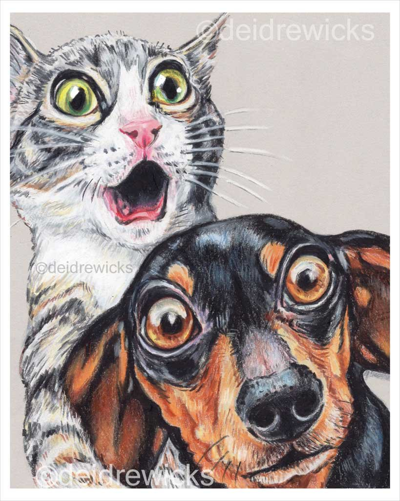 Crayon art of a scared tabby kitten and a dachshund by deidre wicks
