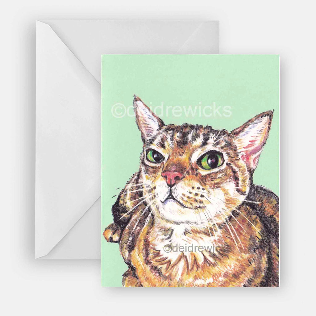 Greeting card featuring a crayon drawing of a sassy brown tabby cat against a green background