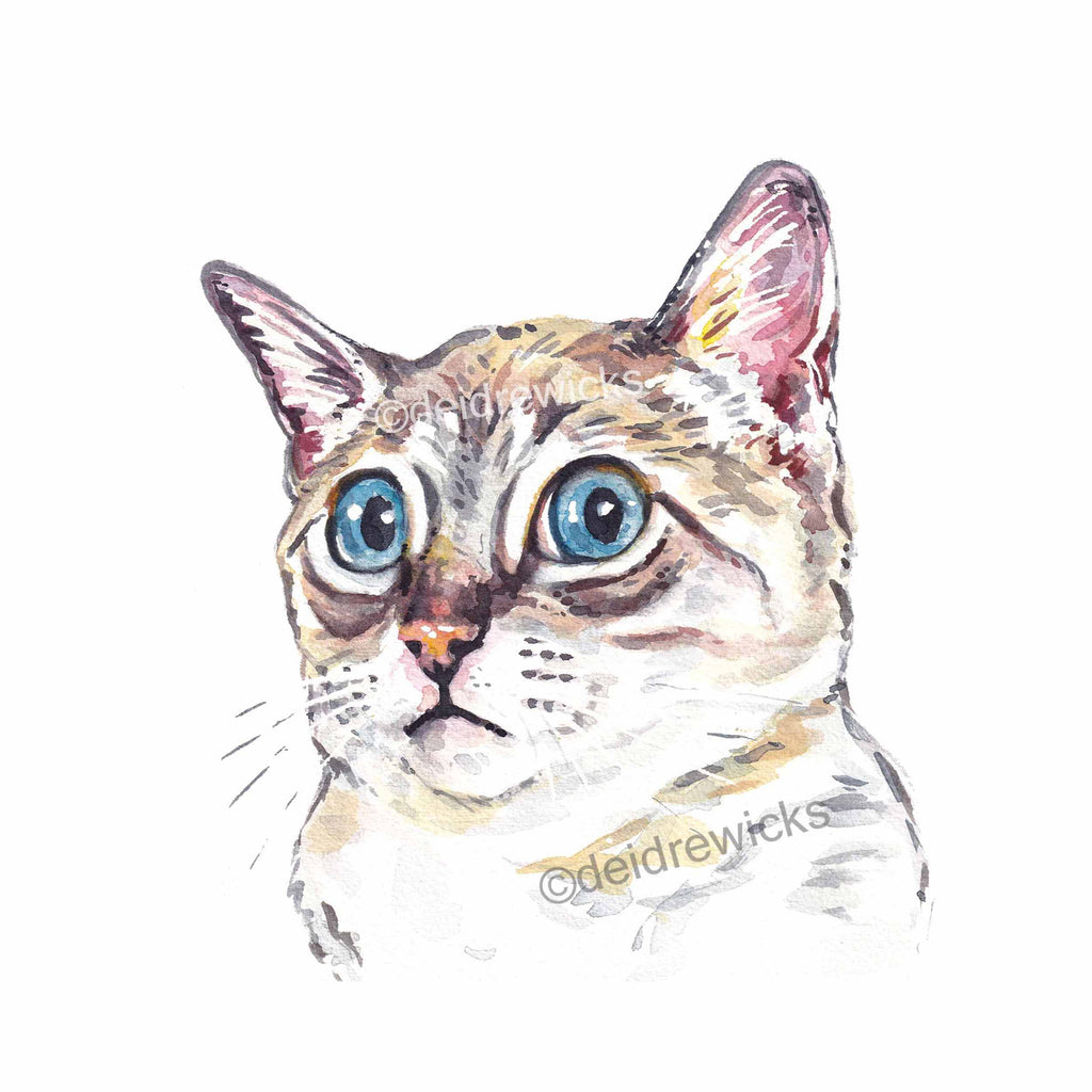 Watercolour painting of a Siamese cat giving you a weird look