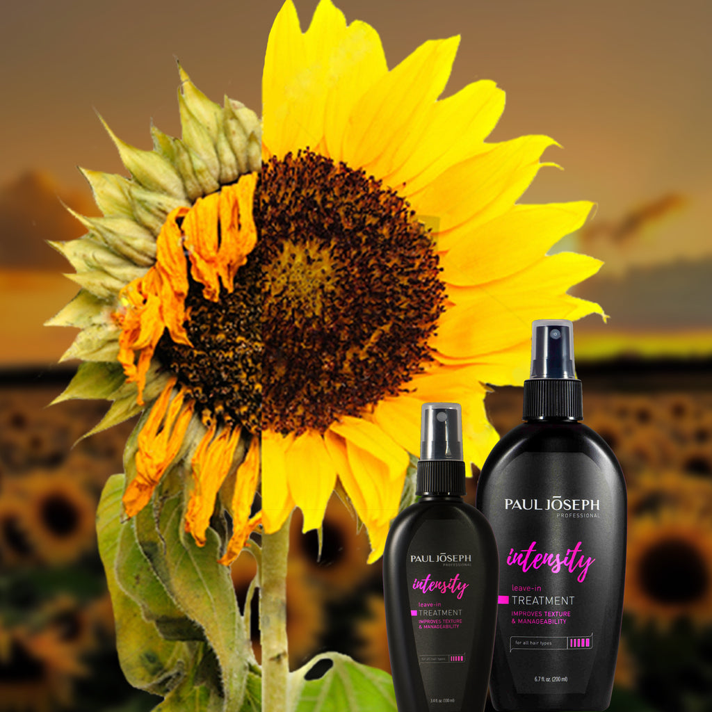 Intensive Repair for Dry & Staticky Hair!