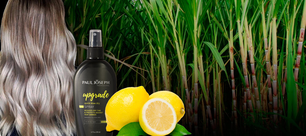 Sweet, Sour & Shine: Creating Healthy Hair with Sugarcane & Lemon Zest Extracts
